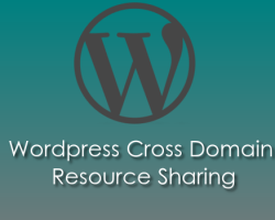 WordPress Allow Cross Domain Resources – An easy guide