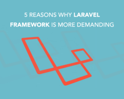 5 Reasons Why Laravel Framework is More Demanding